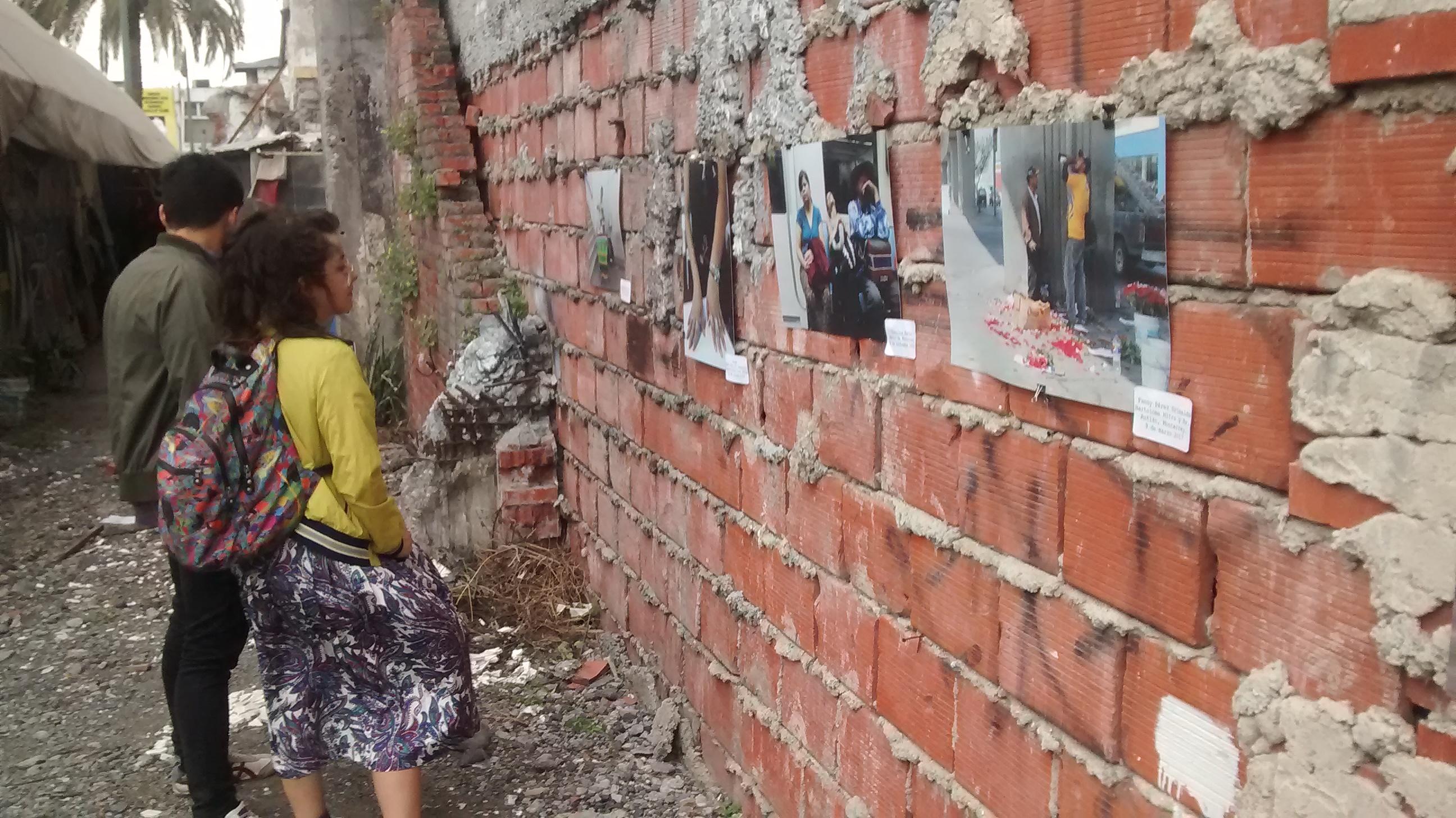 Exposición de Pata de Perro en Pulga Reforma. / FOTO: ADA RODRÍGUEZ